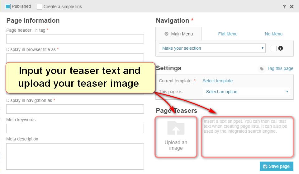 5-input-your-teaser-text