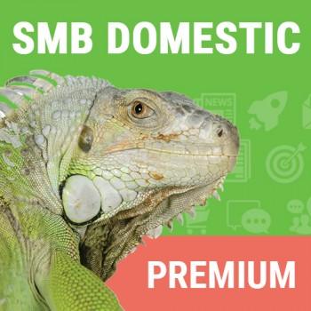 Domestic SMB Premium