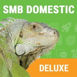Domestic SMB Deluxe