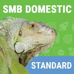 Domestic SMB Standard