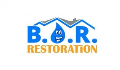 Best Option Restoration Franchise Business Opportunity